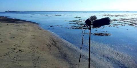 Mics-by-the-calm-North-Sea